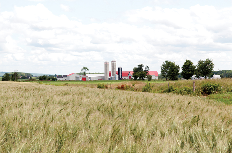 Discussions about the future of Canadian food production should address questions about whether Canada will be able to continue to feed the country though local farmers and processors, and retain family farms, says Ghislain Gervais, president of La Coop fédérée. Éric Labonté, MAPAQ