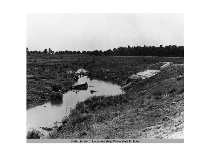 The Works Progress Administration built the roads around the lakes in Baton Rouge in the mid-1930s.