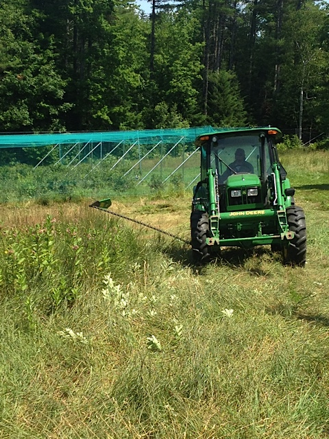 We are out mowing our fields