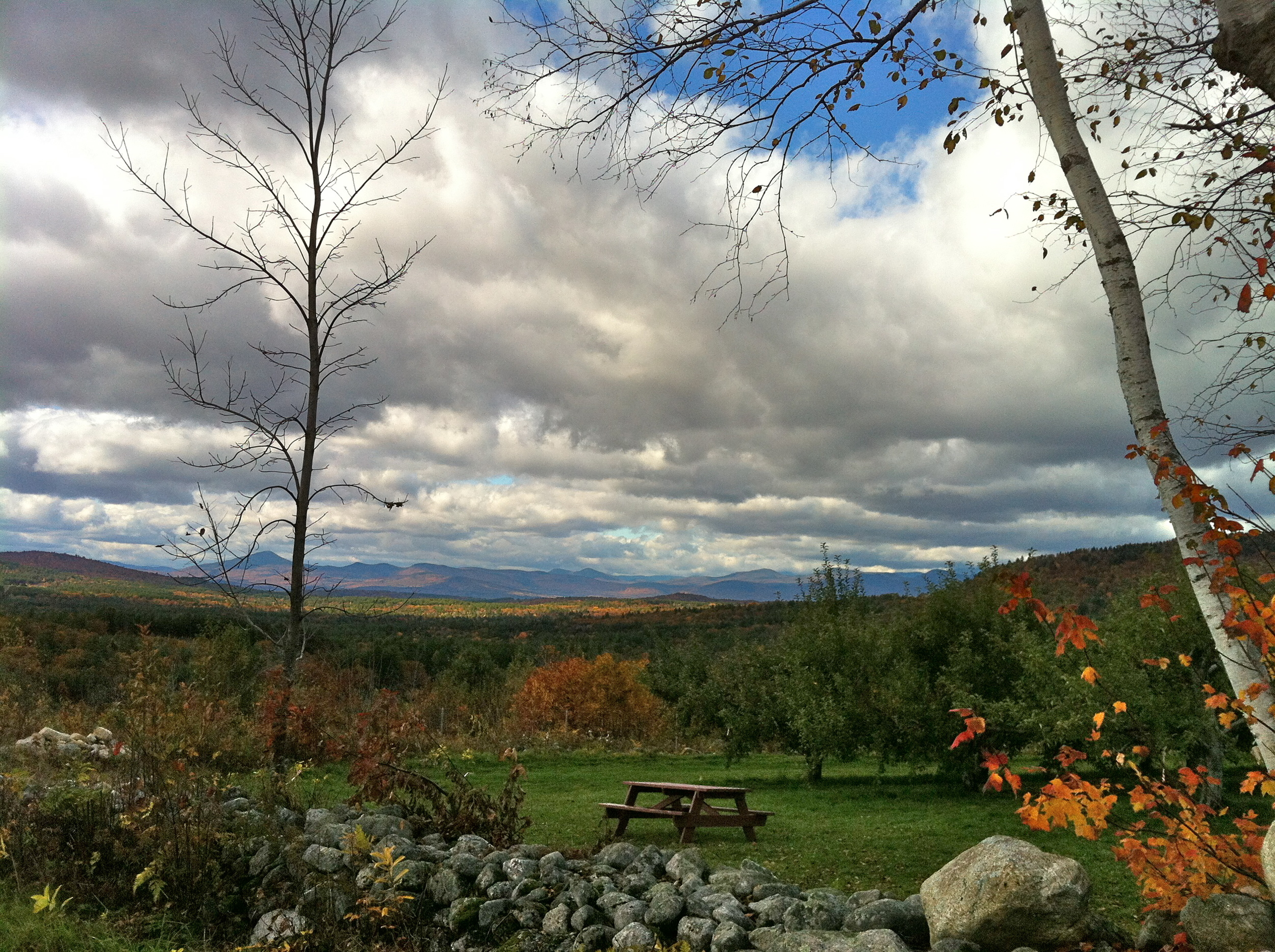 The Orchard is Stunning in the Fall