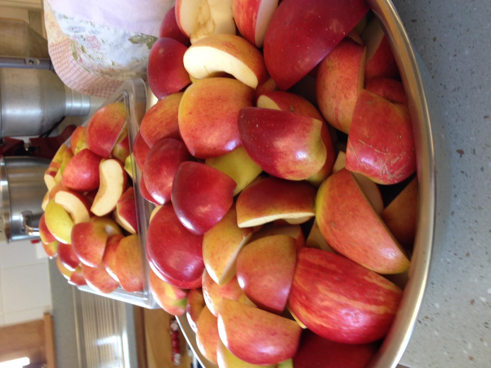Apples Prepped For Applesauce