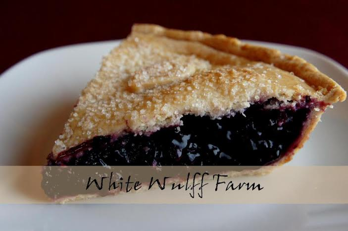 A slice of White Wulff blueberry pie.