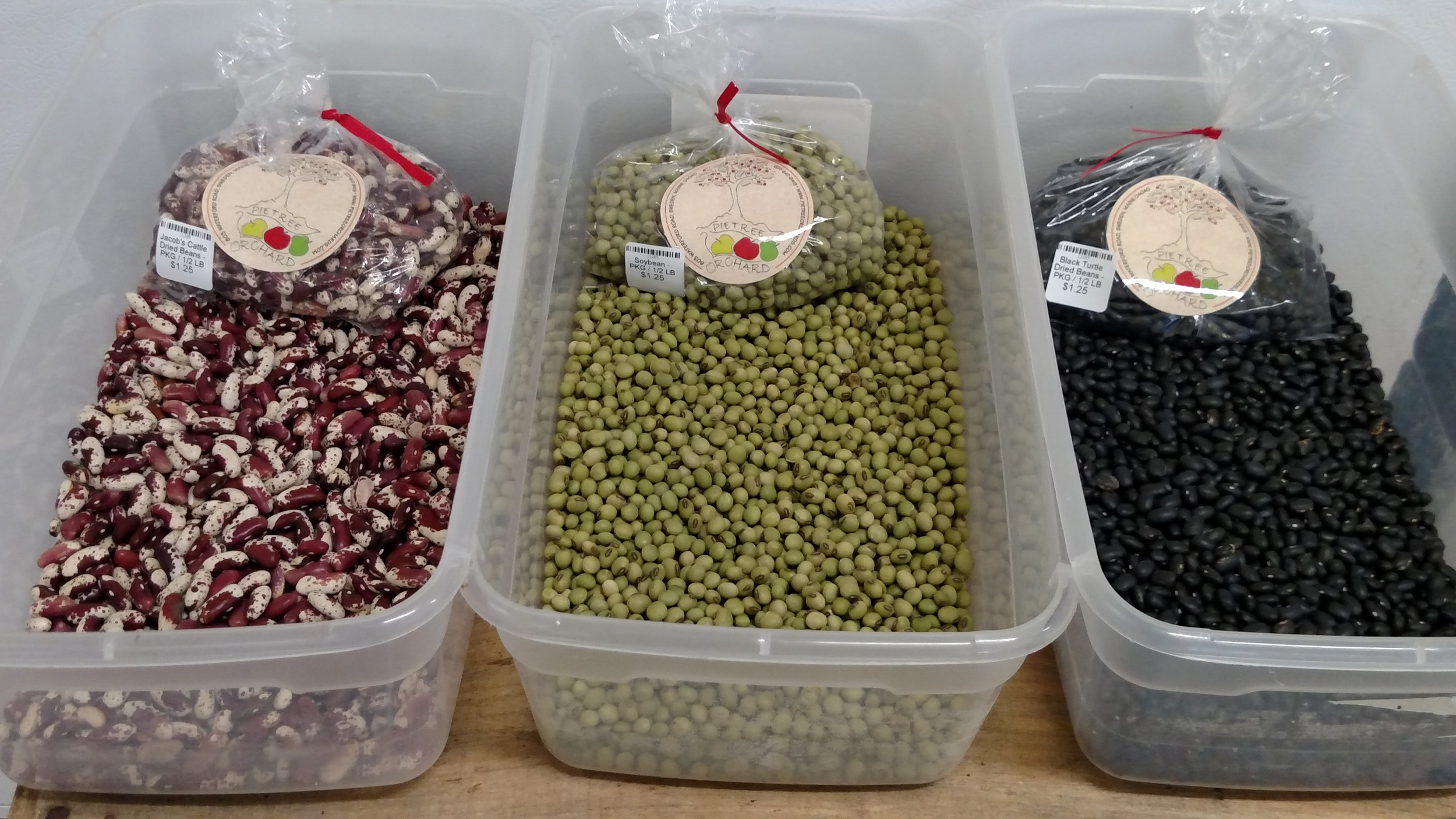 Jacob's Cattle Beans, Soy Beans, & Black Turtle Beans Grown At Pietree!