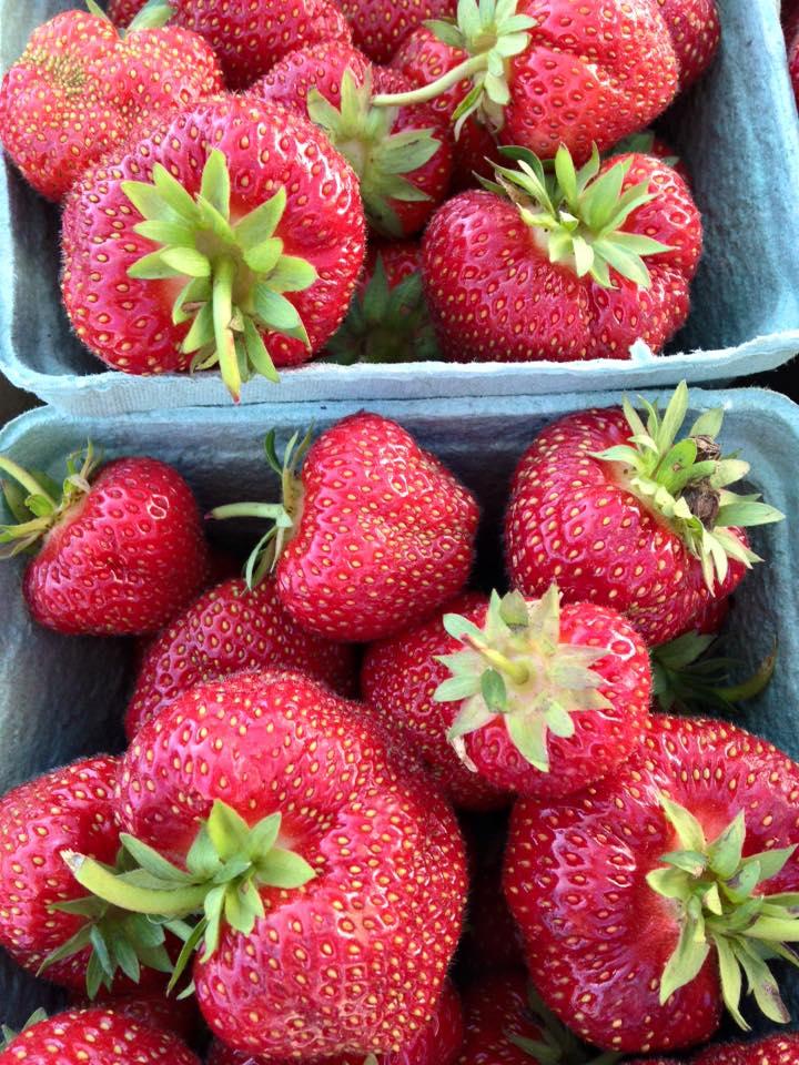 quarts of strawberries