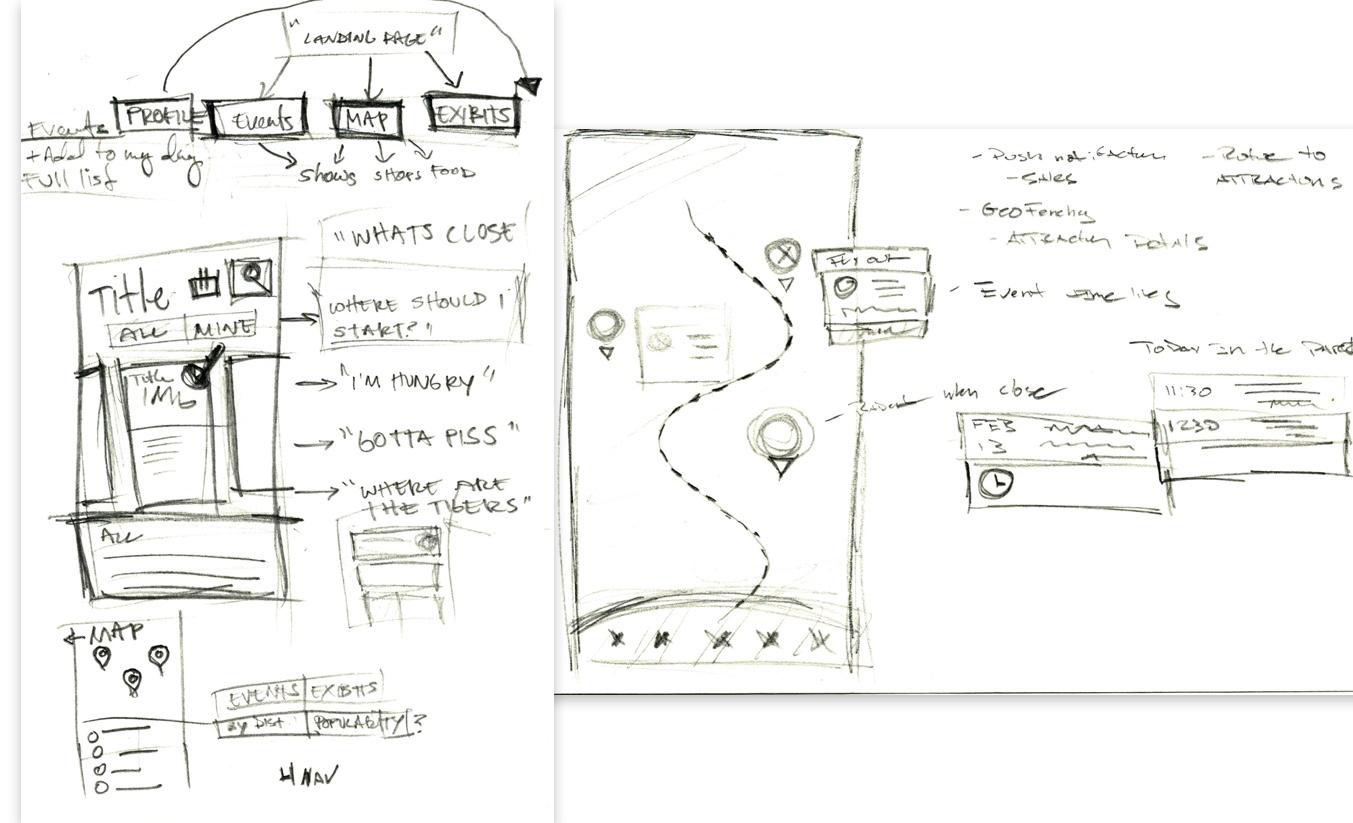 zoo-sketches.jpg