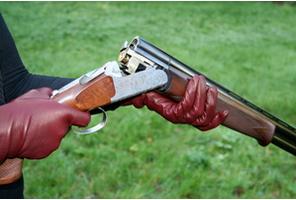Cicilla - Ladies' Shooting$250
