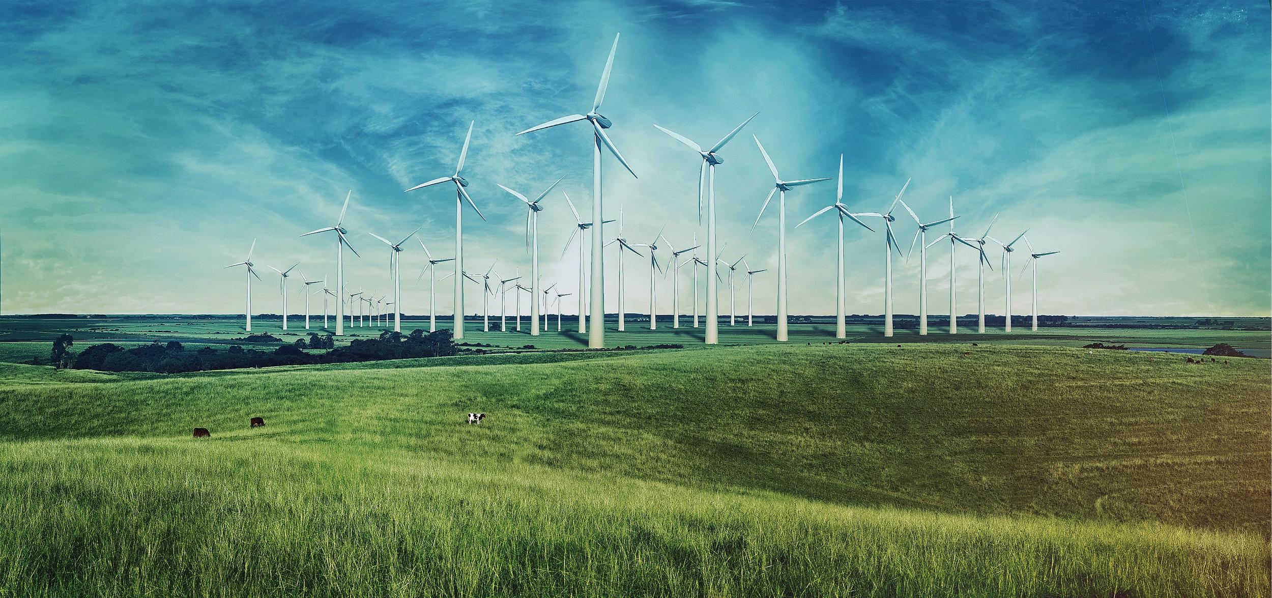Uma empresa brasileira de geração de energia renovável    Saiba mais