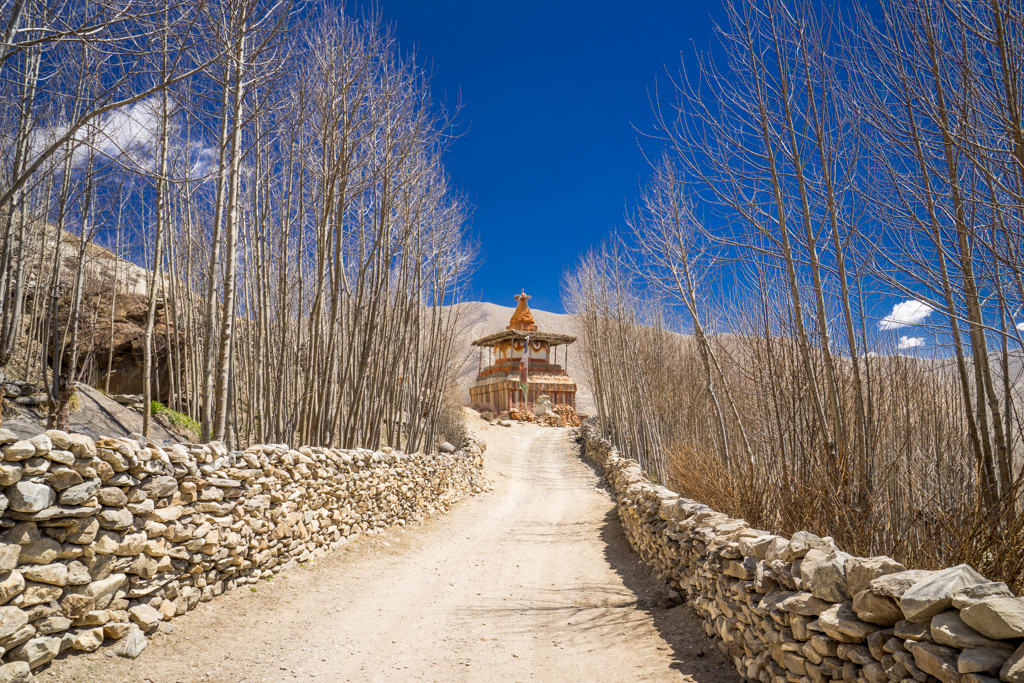 Road leading to a temple