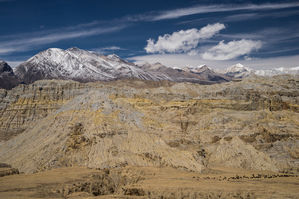 Typical dry landscape in Kingdom of Mustang