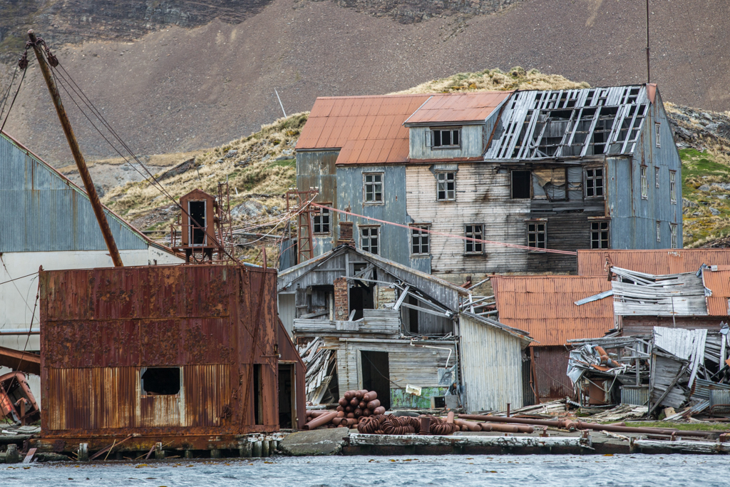 Whaling station and ghost town in gold harbour