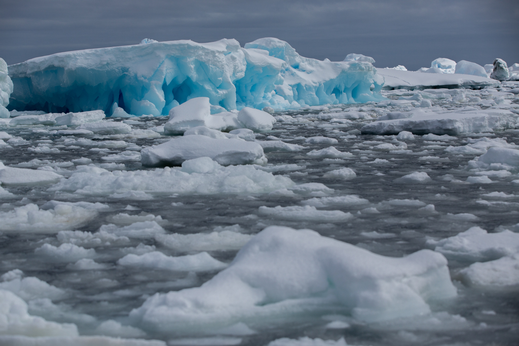 Ice floes in Pleneau Bay
