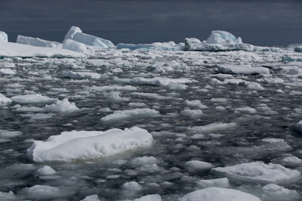 Floes in Pleneau Bay
