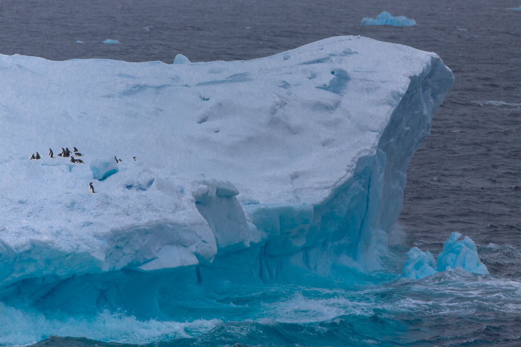 Colorful green iceberg with penguins