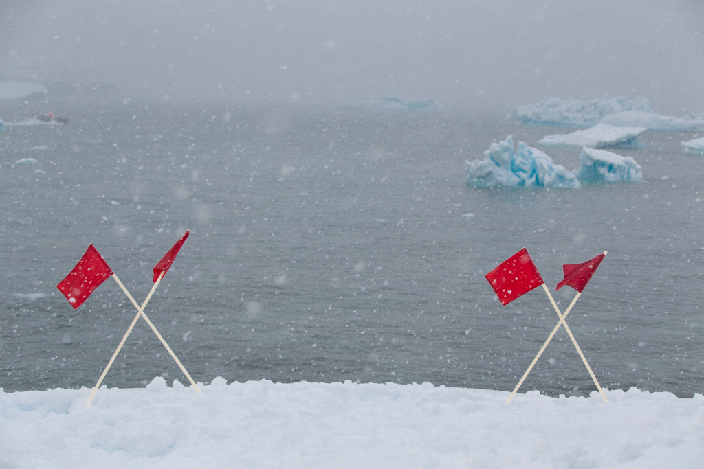 Red flags at Paradise Harbour