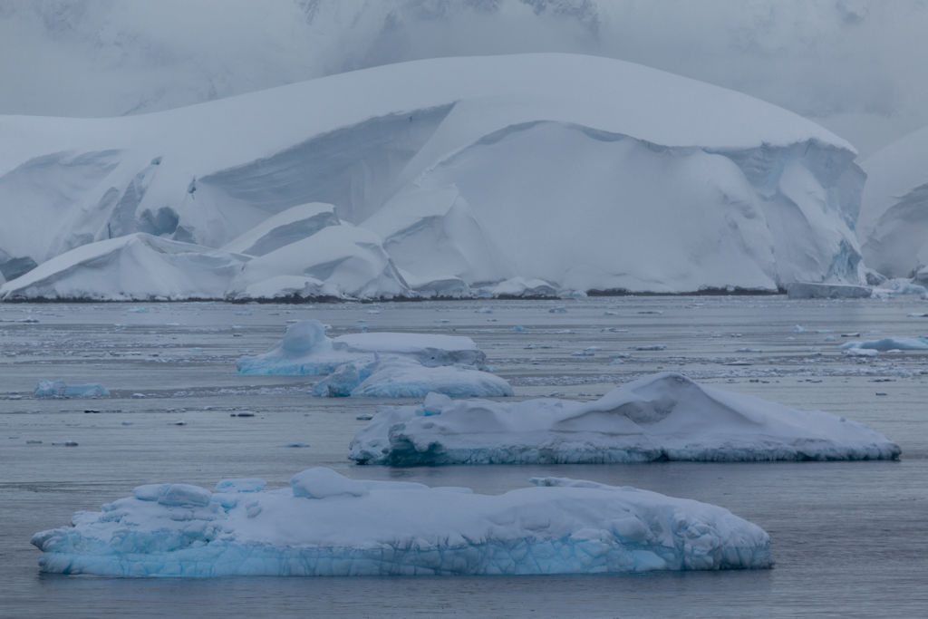 Ice floes in the Gerlache Strait