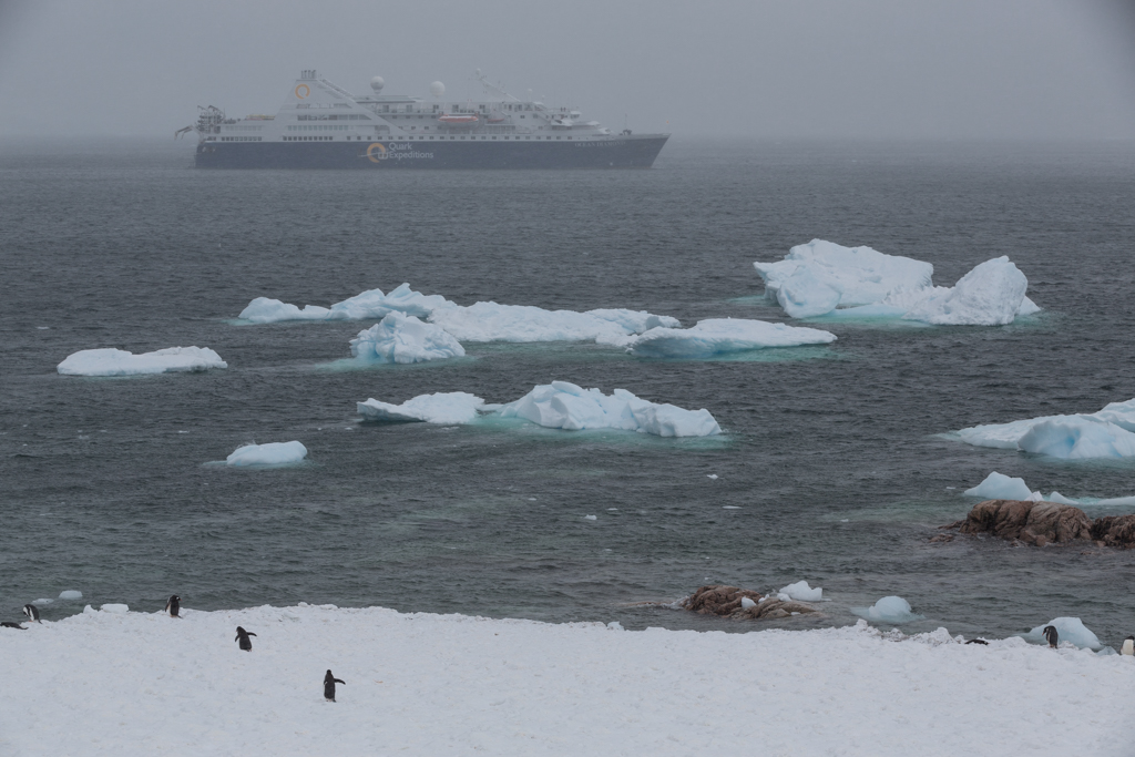 Ice floes in front of the Ocean Diamond