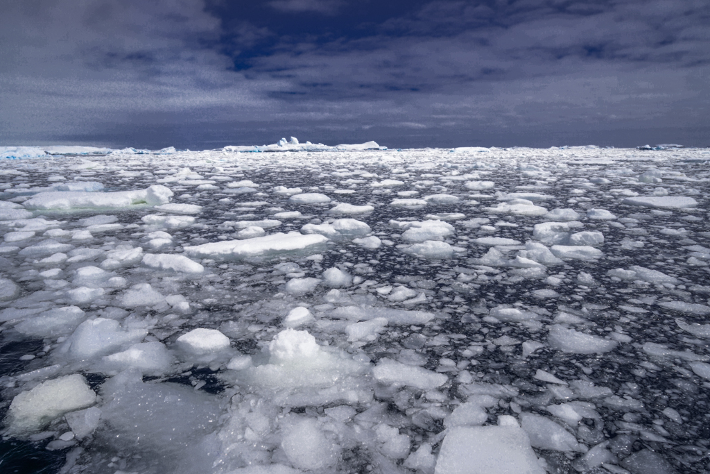 Endlessly loose ice floes