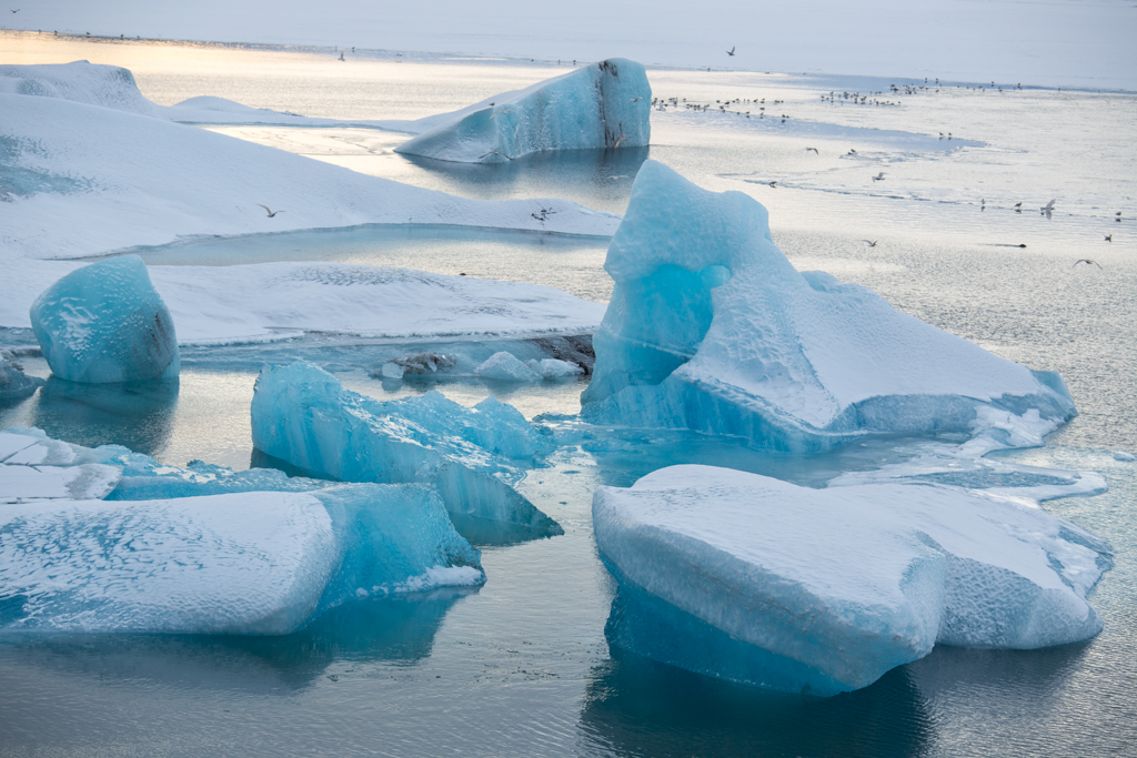 Snowy icebergs on Jökulsarlon