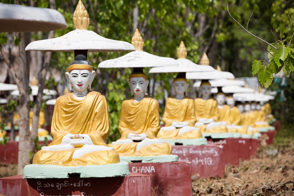 Field of 1000 Buddhas