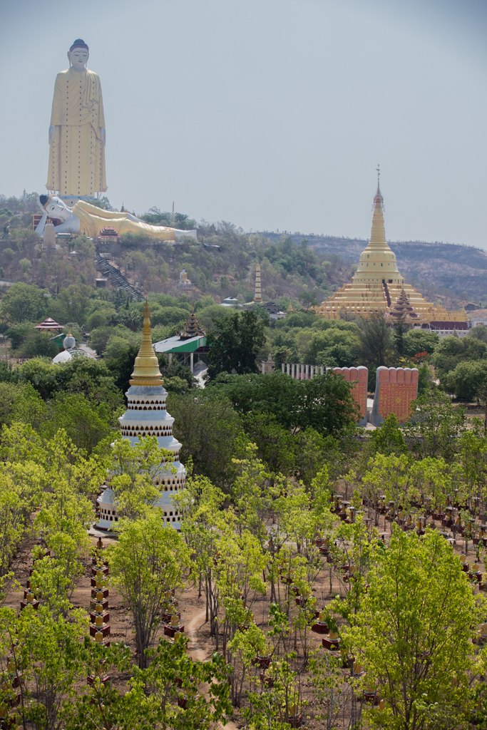 Buddhas from Monywa