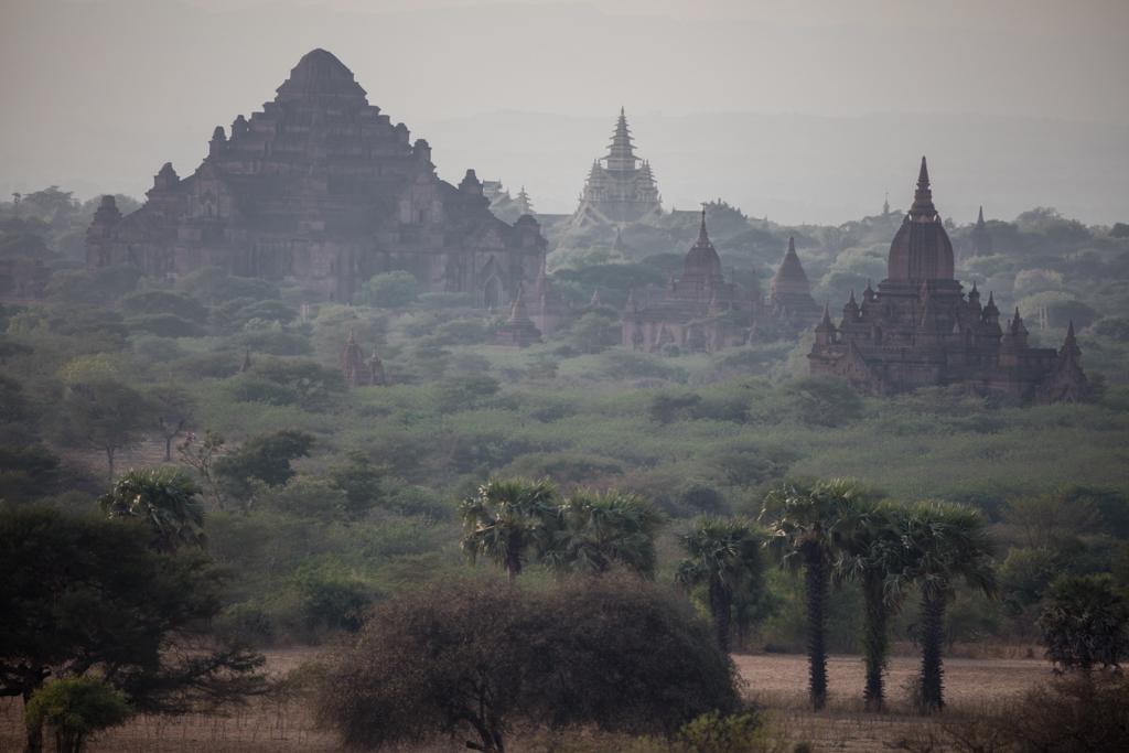 Evening shot in Bagan