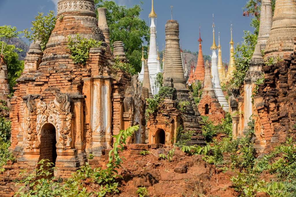 Plants among pagodas