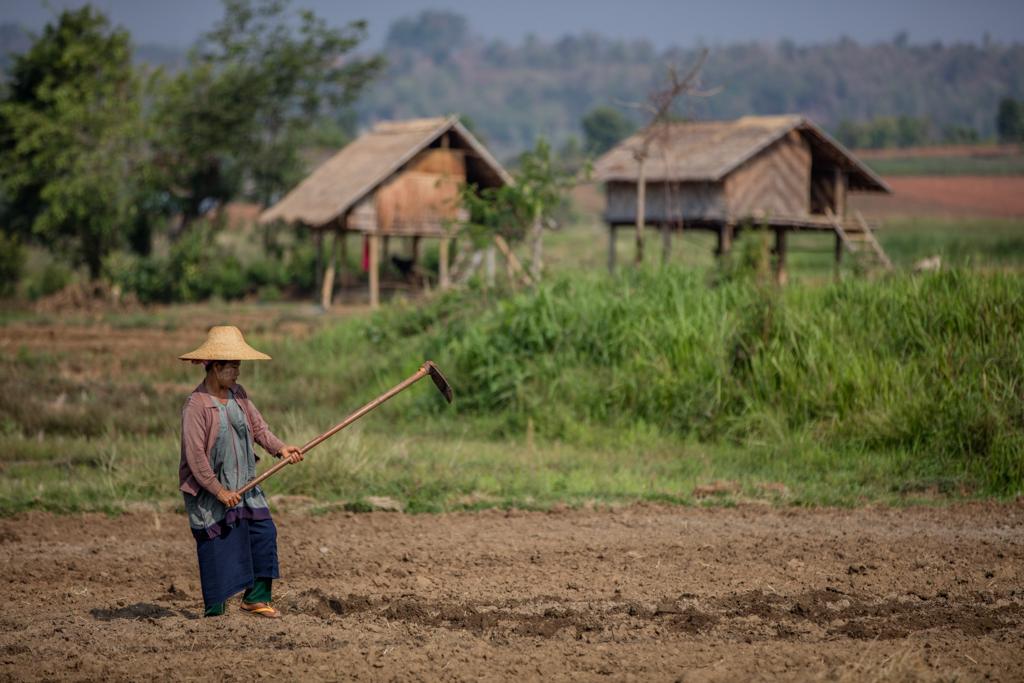 Farmer in Myanmar