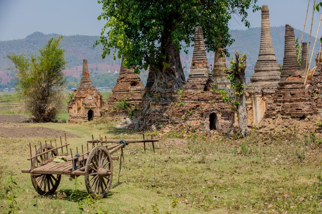 Coach and pagodas in Sankar