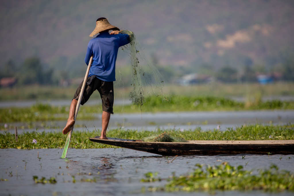 The one leg rowers of Inle Lake