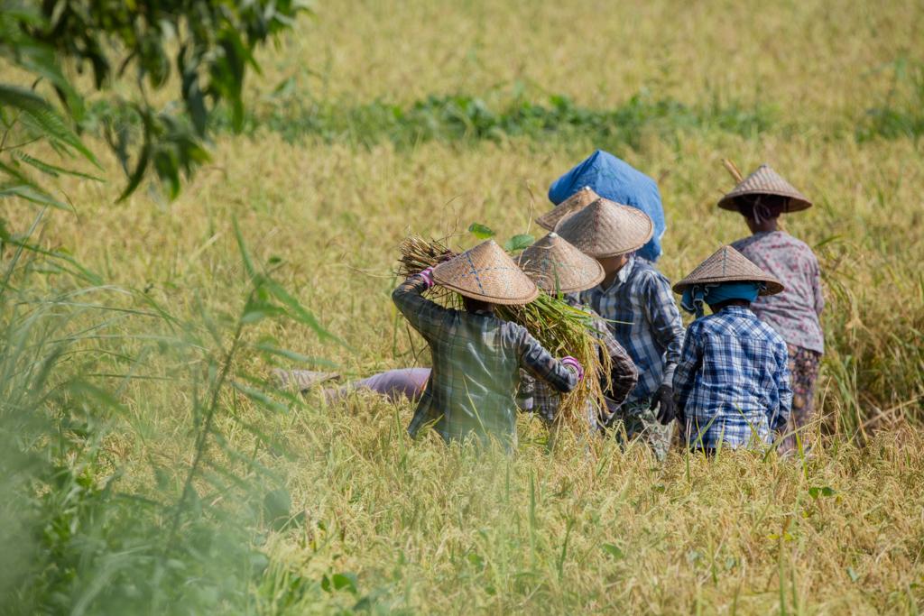 Farmers in Inwa