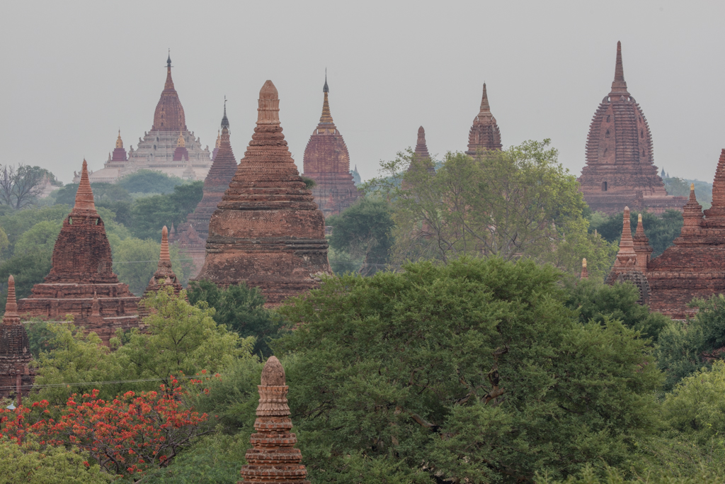 Conglomeration of temples