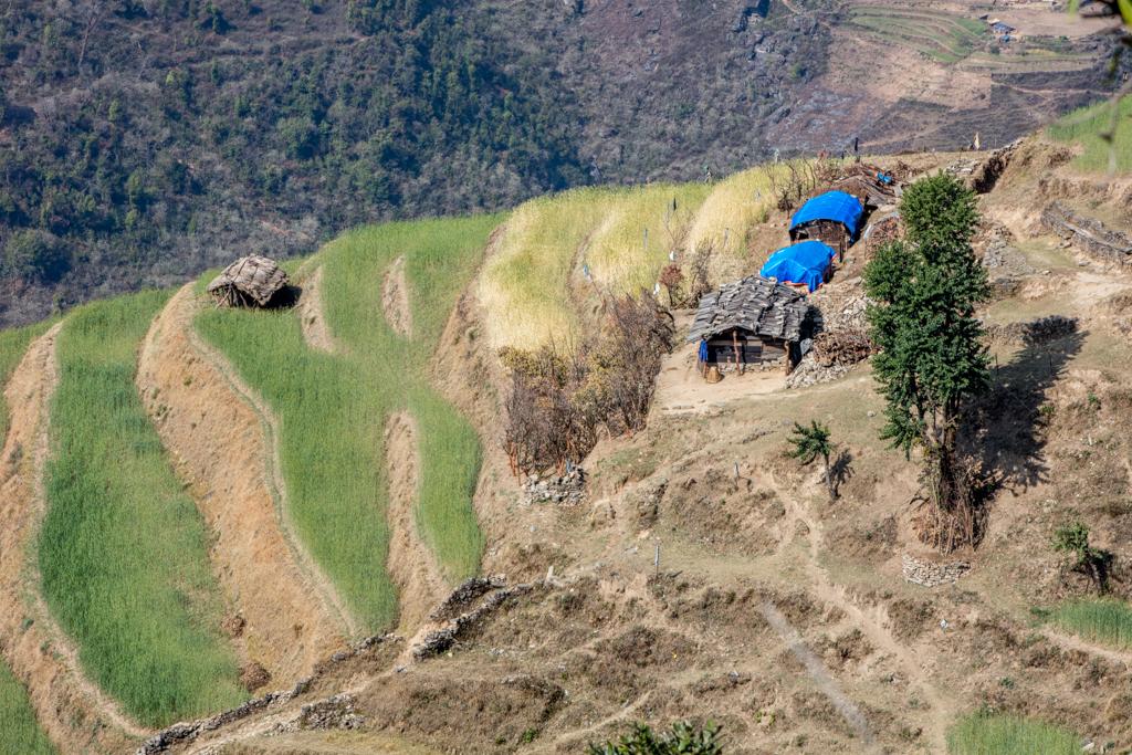 Terraces near Kenja