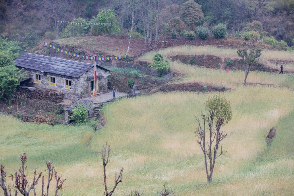 Fields near Kharikhola