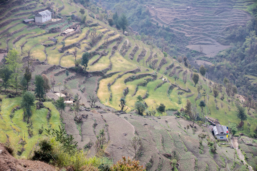 Country life in Kharikhola