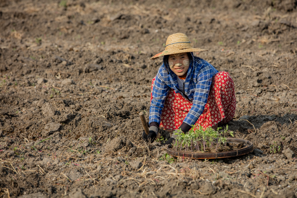 Farmer at Inle Lake in Myanmar