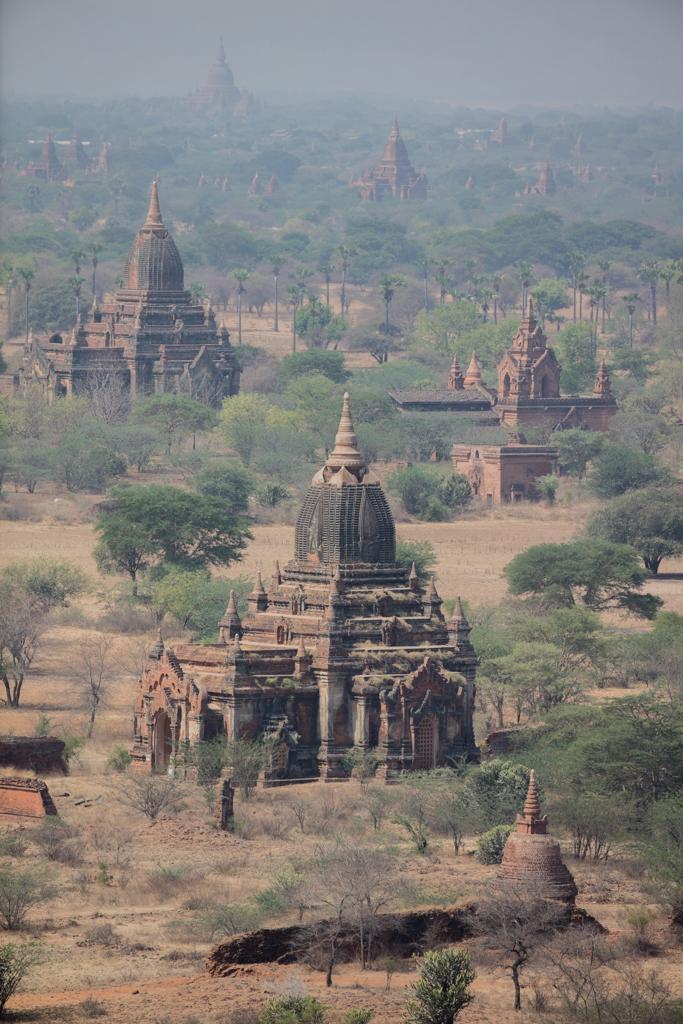 Line of temples in Bagan