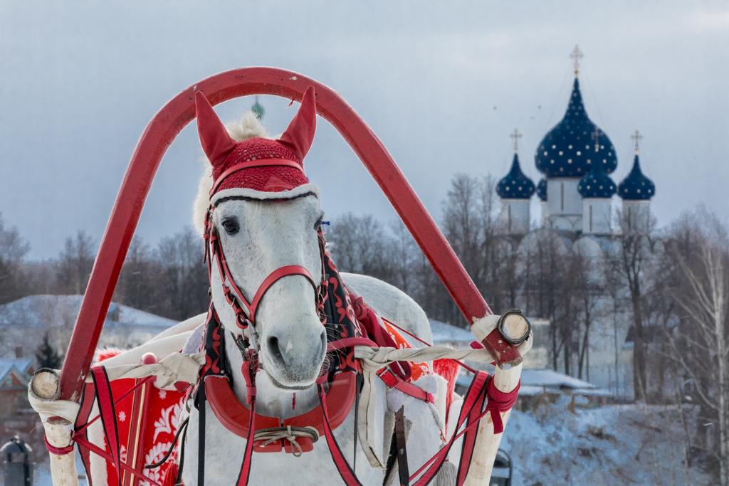 Golden_Ring_Russia_30.jpg