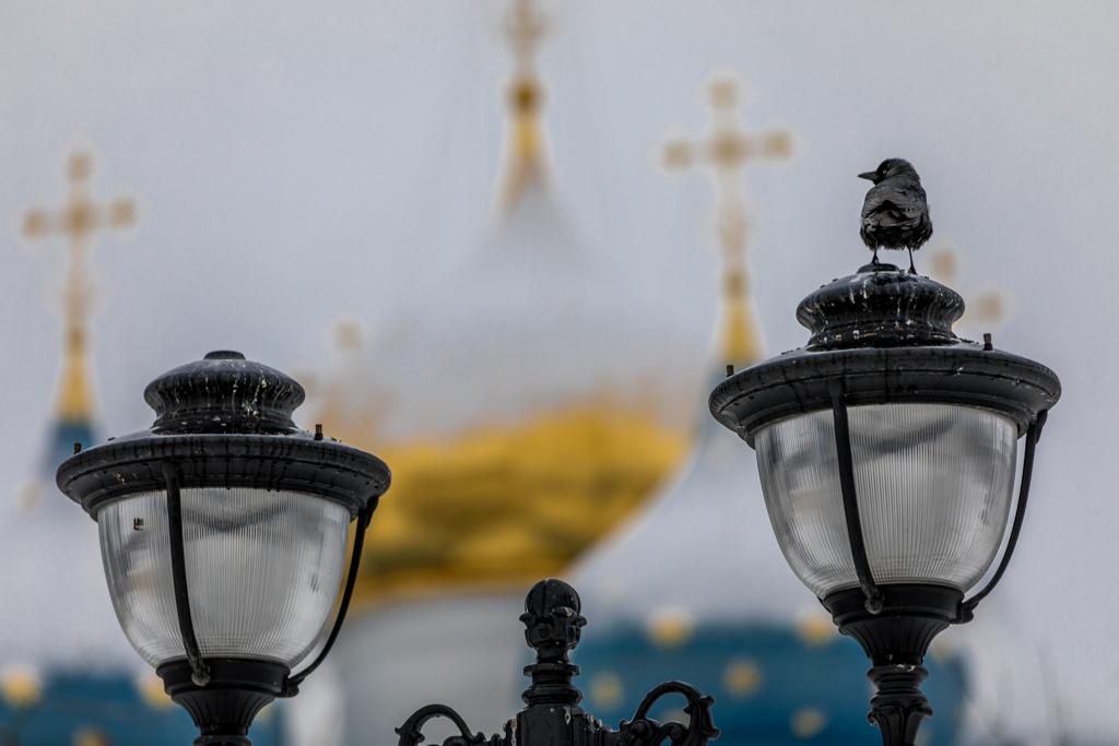 Golden_Ring_Russia_56.jpg
