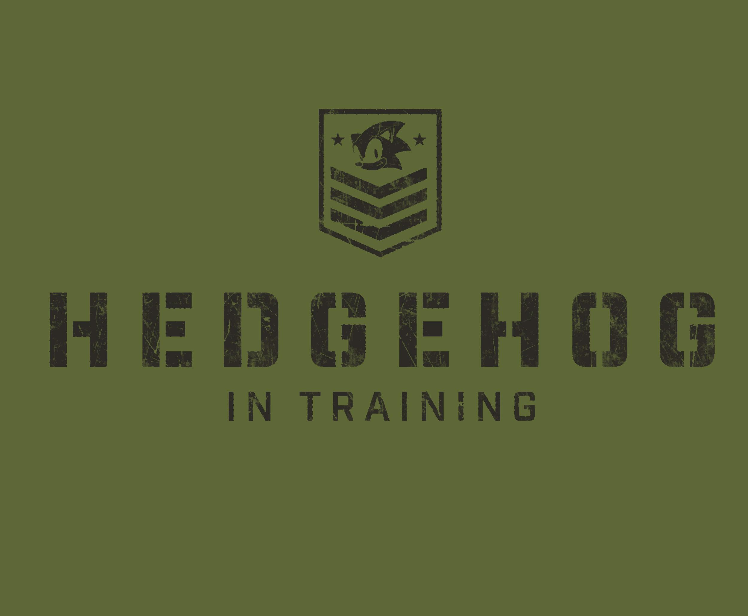 Sonic Army In training.jpg