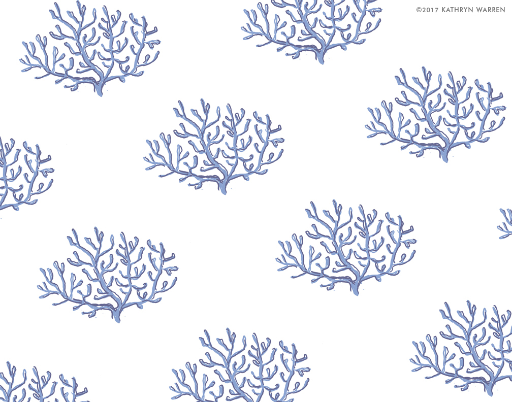 Coral (navy)