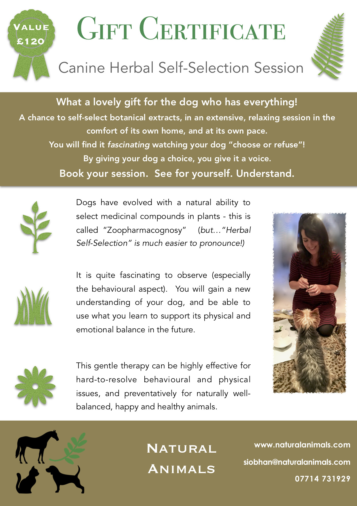 A5 NA Canine Gift Certificate P1.jpeg