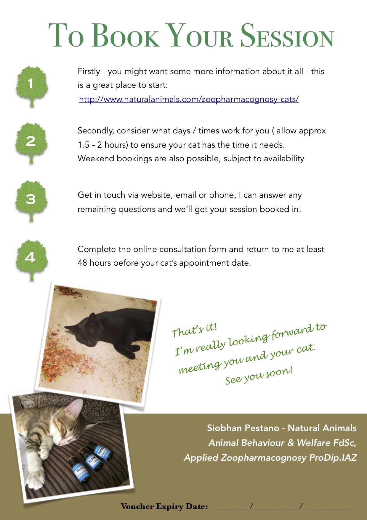 A5 NA Feline Gift Certificate P2.jpeg