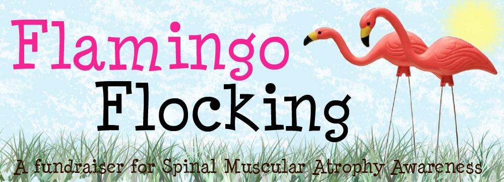 flamingo_flocking_revised.png