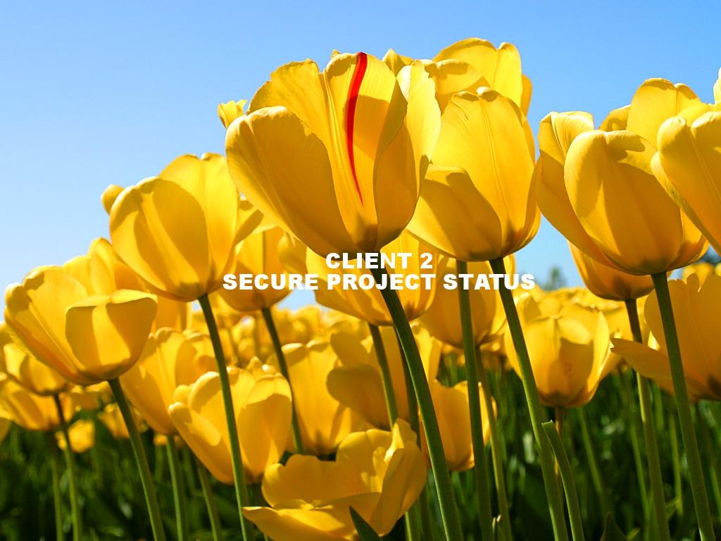 Client 2 Secure Project Status