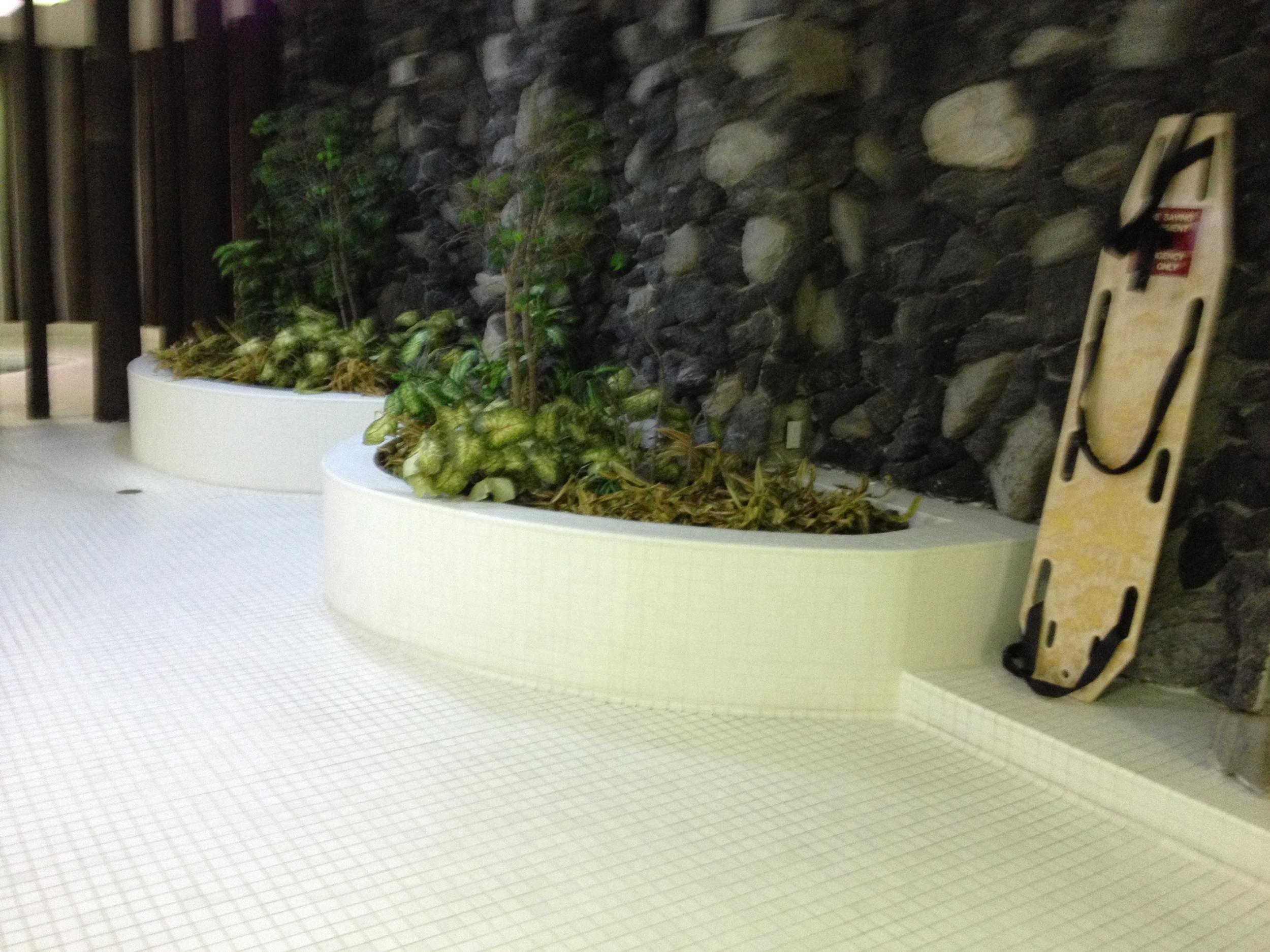 Existing Pool Area