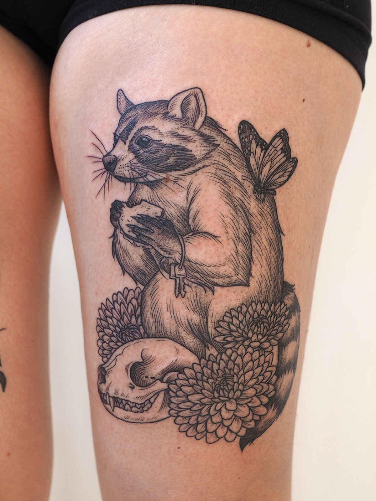 candace raccoon.jpg