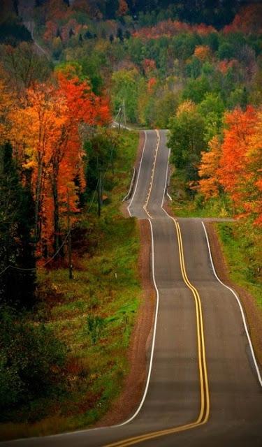 road+3.jpg