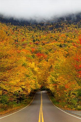 road+6.jpg