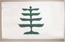 HIST_pine_tree.jpg