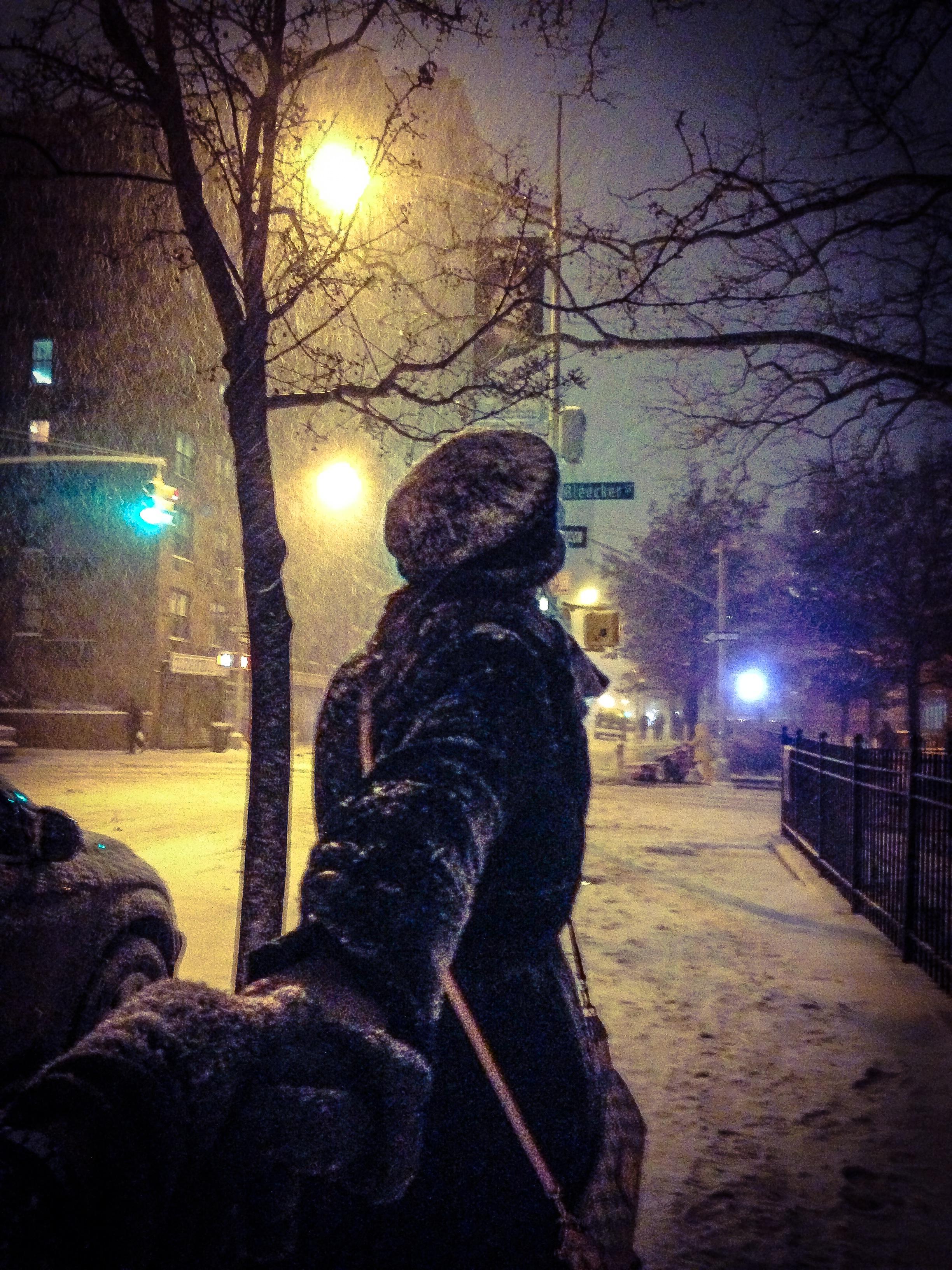 Mercer & Bleeker | Crazy Snow Storm